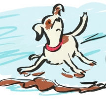 Hondje op het ijs